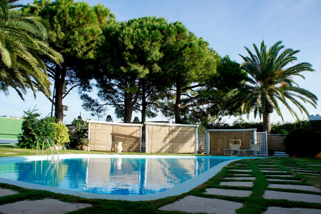swimming pool surrounded by greenery with trees and palms over thirty years